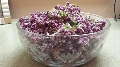 Cheri's Red Coleslaw with Grapes